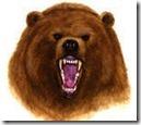 bear-market-signals