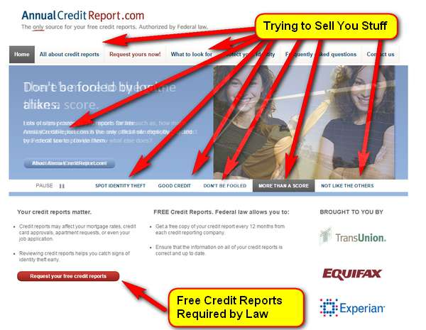 annual credit report website