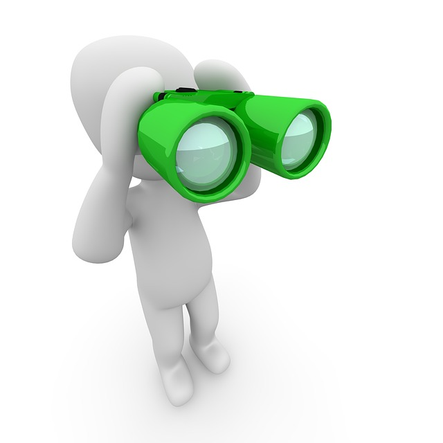 looking for future fed rate hikes