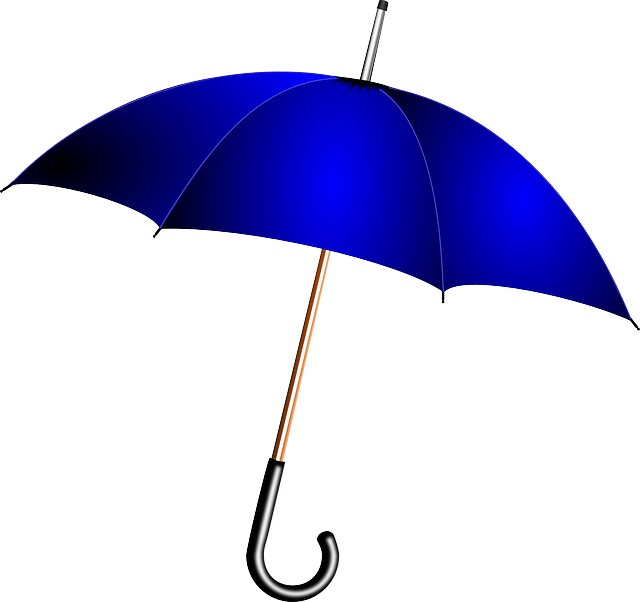 umbrella insurance need
